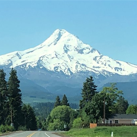 Welcome to the Pacific Northwest