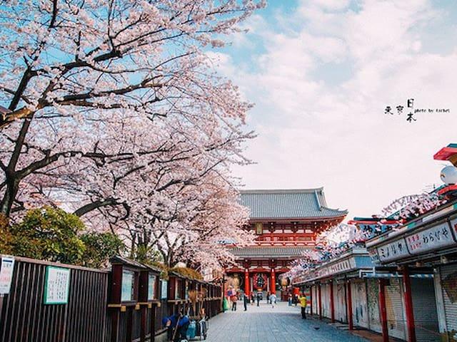 大阪和东京的观光指南