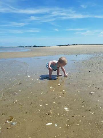 Guidebook for Atlantic Beach