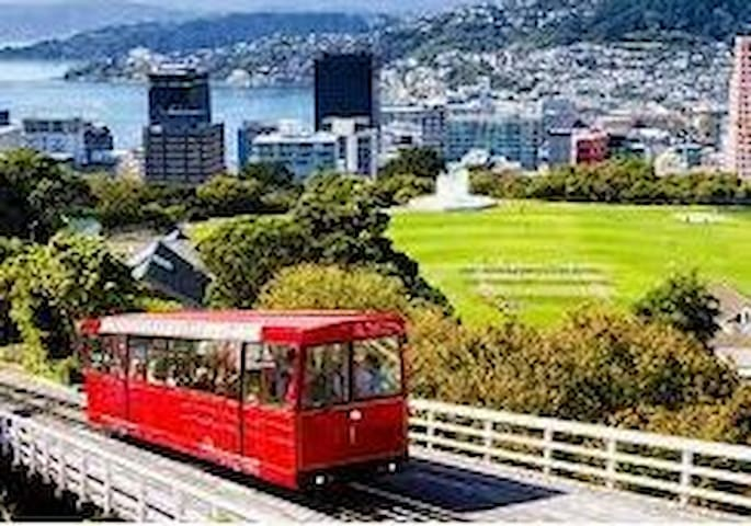 Guidebook for Wellington