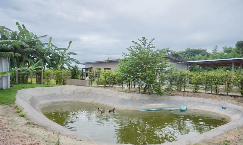 Nong Chaeng Sub-district的民宿