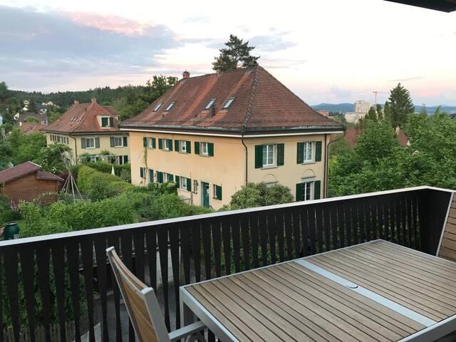 温特图尔(Winterthur)的民宿