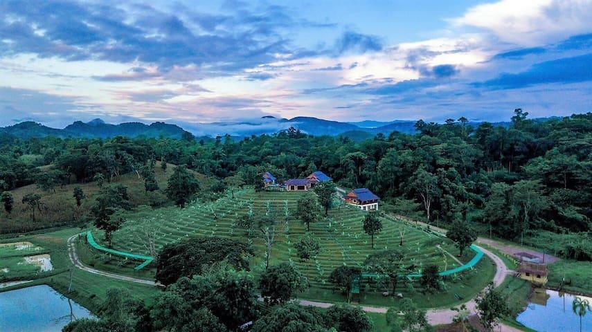 Tambon Si Don Chai的民宿