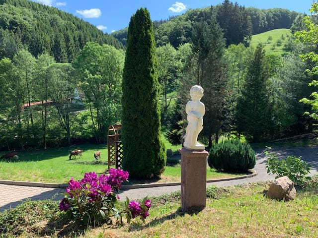 Oberharmersbach的民宿