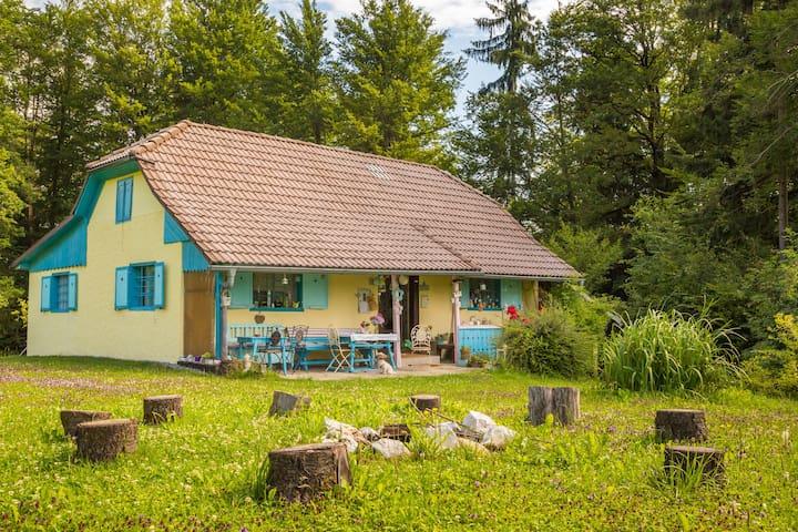 Braslovče的民宿
