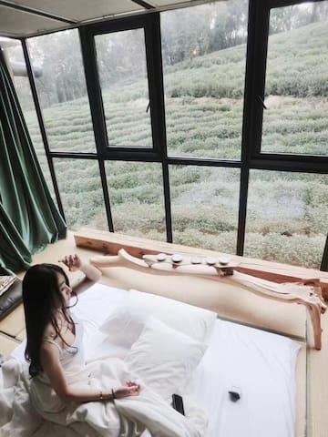 『拾时·茶』西湖景区内,泡杯香茗,隔窗望茶~