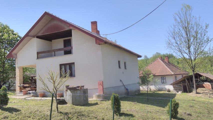 布鲁塞维茨民宿