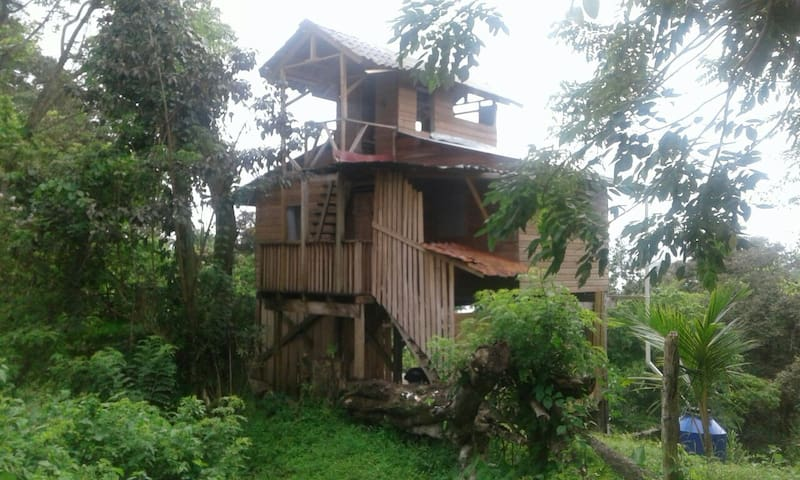 Surf&Chill Jungle Lodge with Ocean View