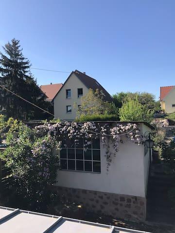 Molsheim的民宿