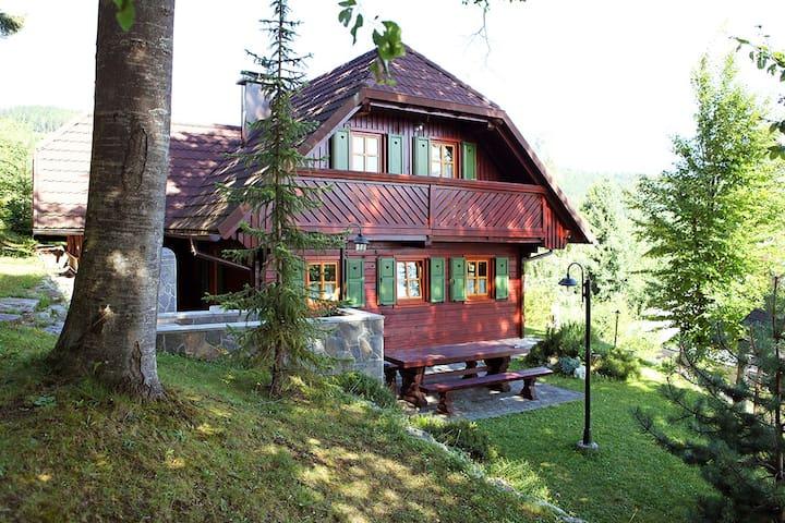 Planina na Pohorju的民宿