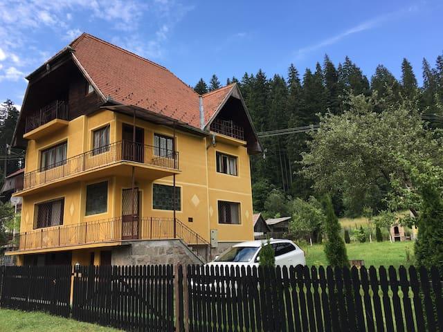 Băile Tușnad的民宿