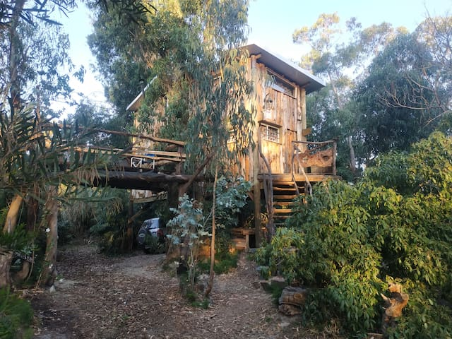 La Floresta的民宿