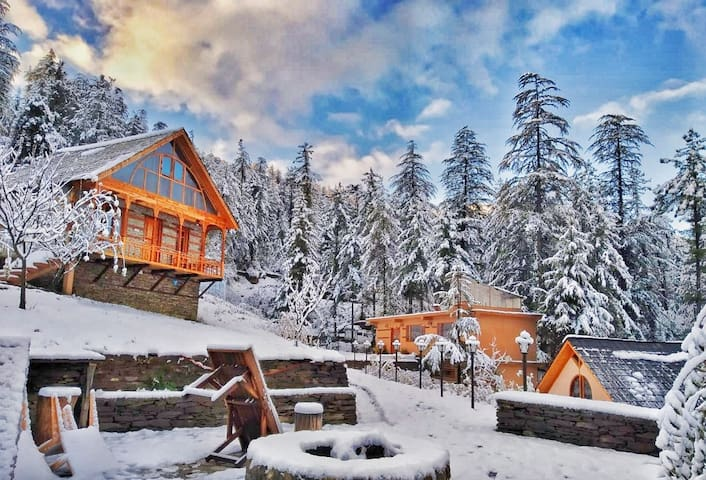 Luxury in the Lap of Himalayas|Oakwood cottage