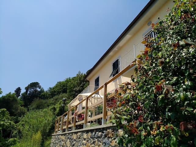 Castiglione Chiavarese的民宿