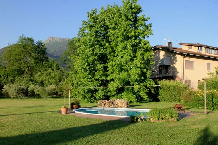 Vintage Cottage in Camaiore with Swimming Pool