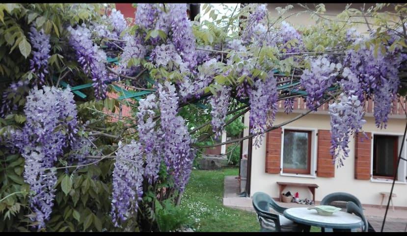 Santa Giustina的民宿