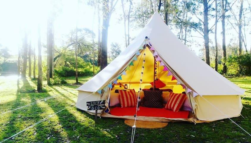 Luxury Glamping Bell Tent in Cattai National Park