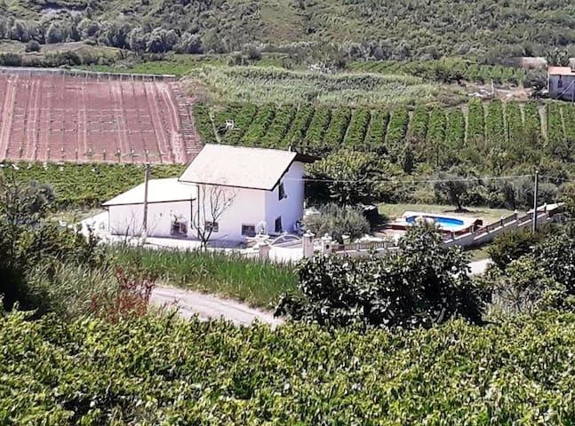 Orsogna的民宿