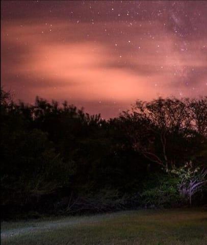 Big Pine Key的民宿
