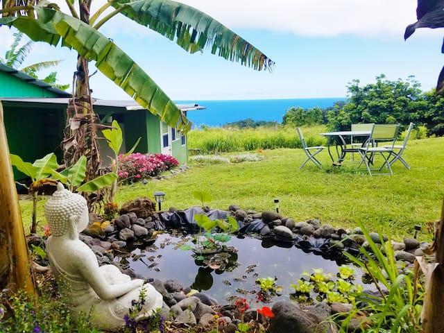 Hawaii County的民宿