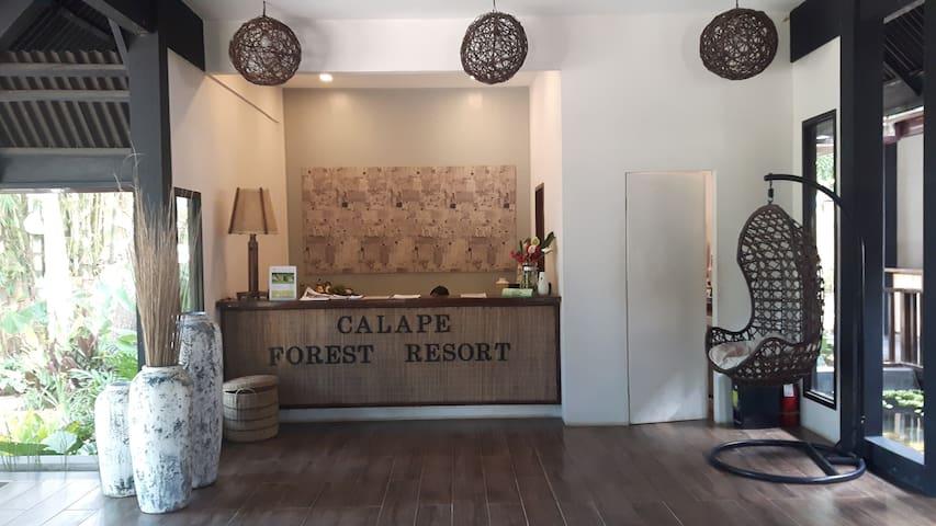 Calape的民宿