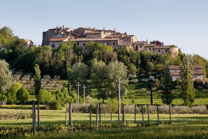 Torre del Colle的民宿