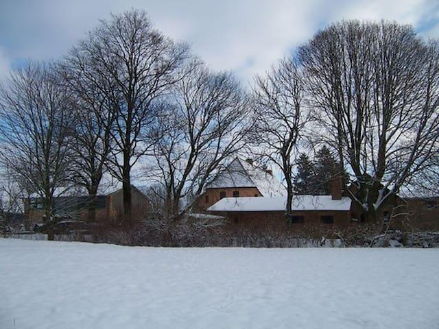 Ribnitz-Damgarten的民宿