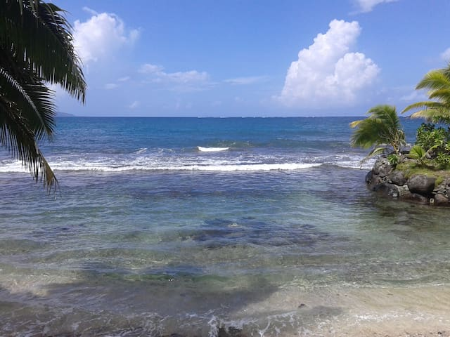 Windward Islands的民宿