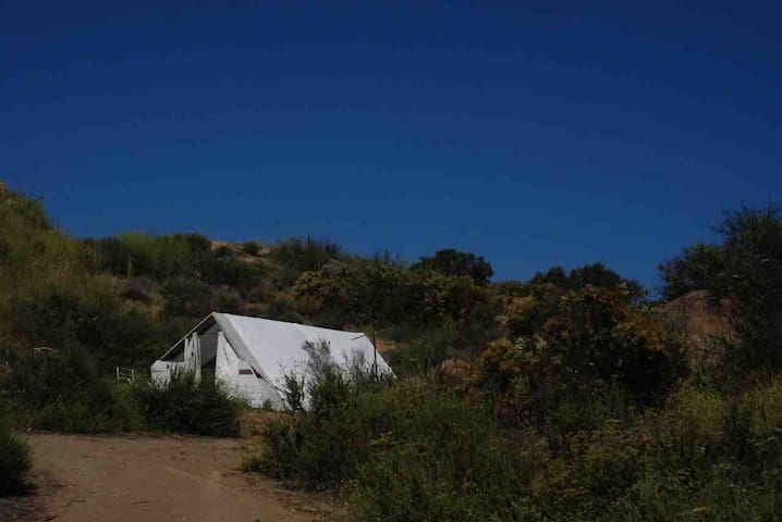 Glamping Tent on 170 acre Ranch