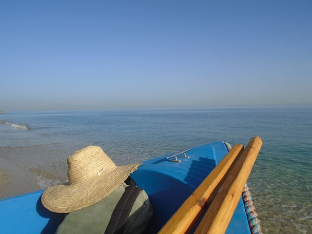 Ain Taya的民宿