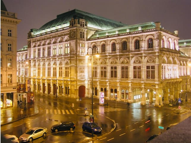 OPERA CATHEDRAL APARTMENT, just Heart of Vienna
