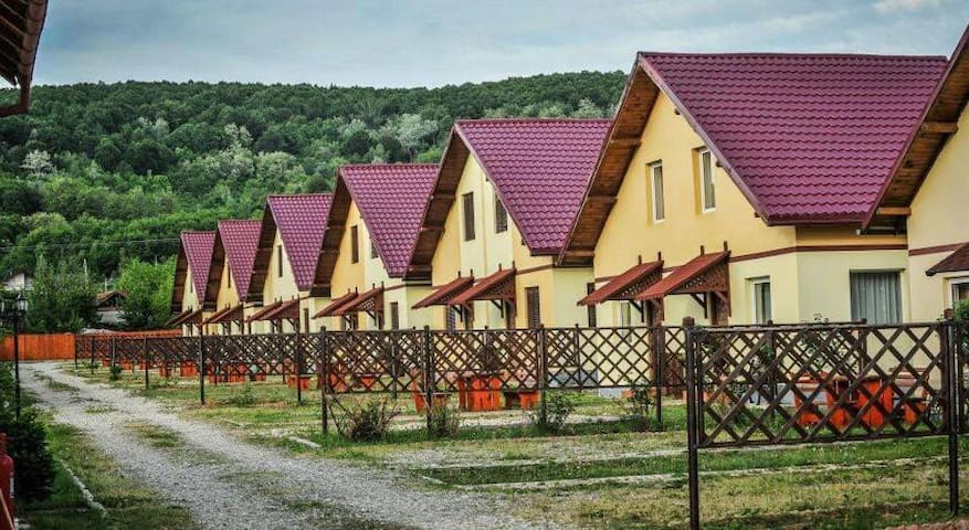 Budeasa Mare的民宿