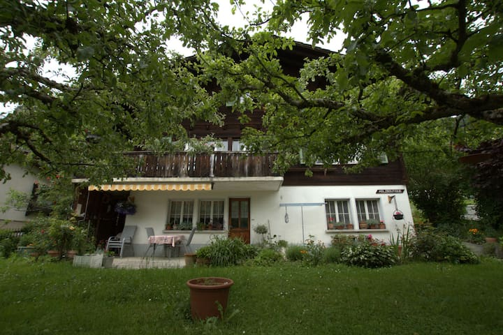 Neat house with view at the mountains, 3km from Lake Brienz