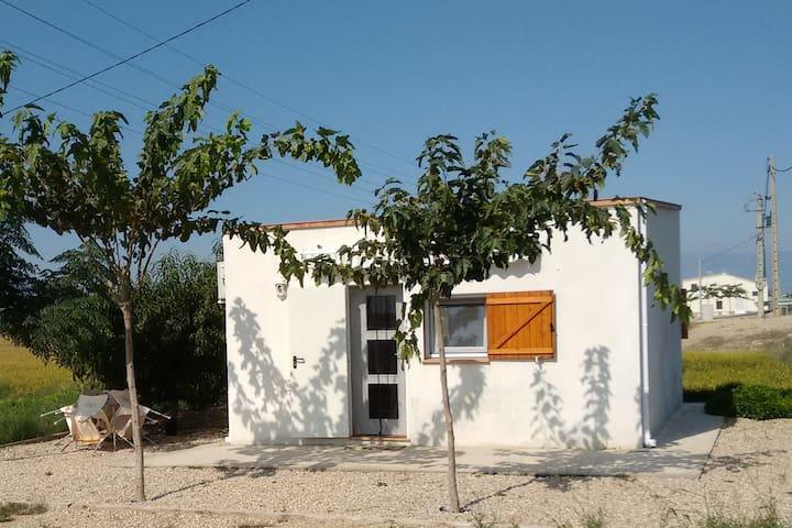 Caseta Mediterrània, Delta, flamencs i platges.