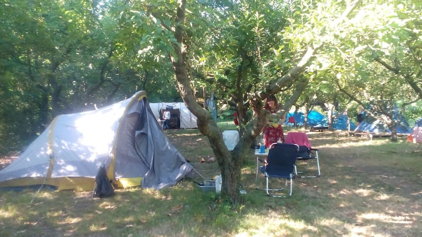 Camping space near Venice with camp kitchen