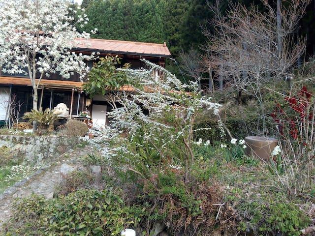Shinshiro的民宿