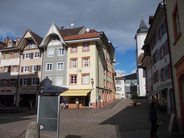 Waldshut-Tiengen的民宿
