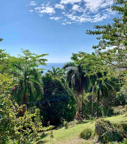 Port Maria的民宿