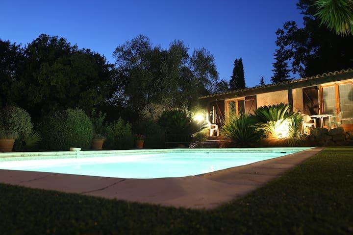 Nice studio Yucca near Cannes with pool