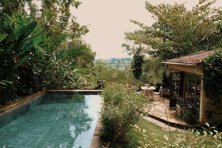 Yogyakarta 的民宿