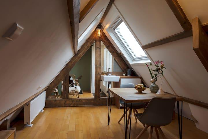 Private Attic Studio/Roofterrace