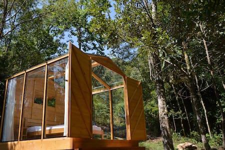 Cabana de Vidro Em Meio a Floresta Remota