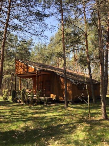 Maciejowice的民宿