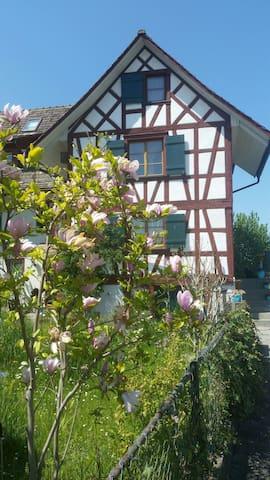 Romantisches Paradies am Rhein