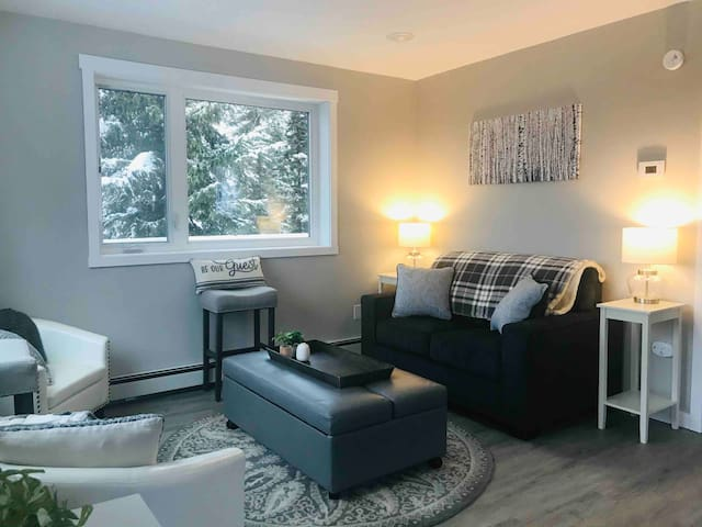 Northern Lights Chalet - Brand New - Entire Home