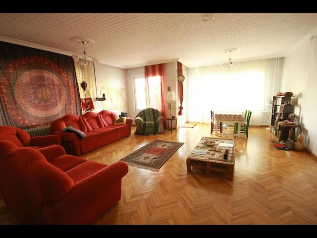 Quite nicely located and spotless- Room 1