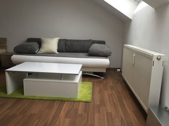 1 Zimmer Apartment plus Schlafcouch