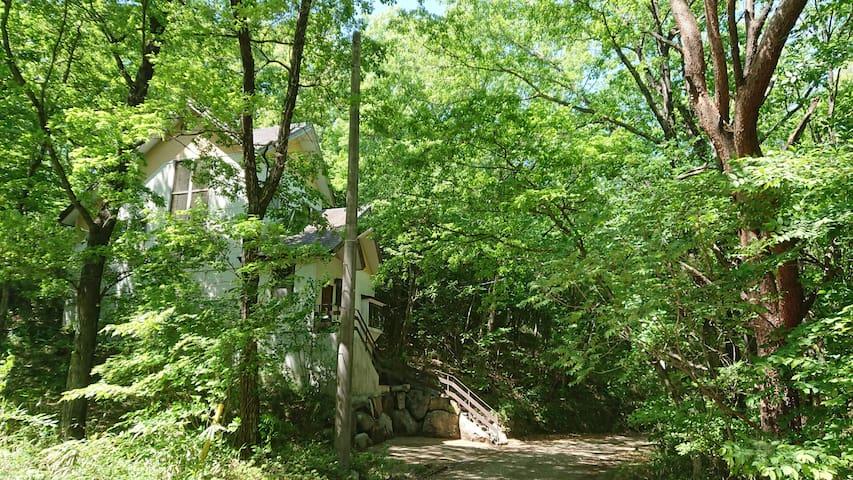 静寂に包まれた森の中の別荘/Peaceful villa in the forest