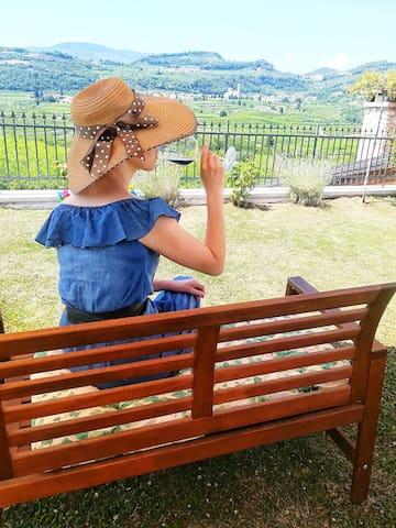 维罗纳的体验