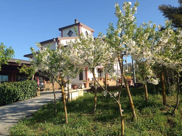 Monteleone di Puglia的民宿